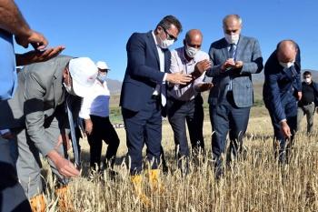 Devlet desteğiyle çiftçinin yüzü güldü