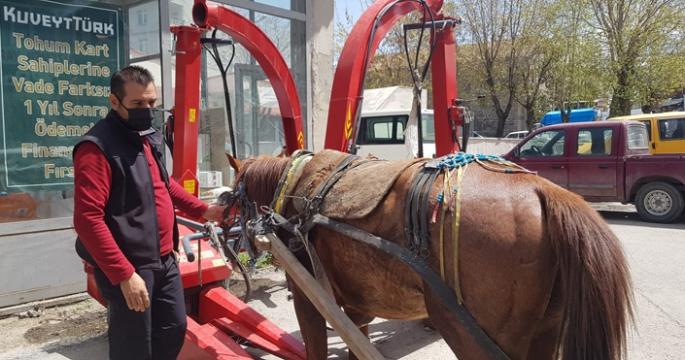 Erzurum'da dörtnala koşan at, trafiği birbirine kattı
