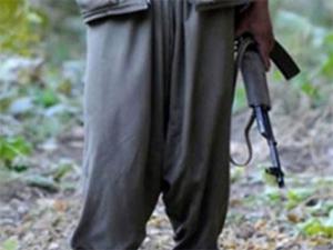 Diyarbakır'da PKK köylülere saldırdı!