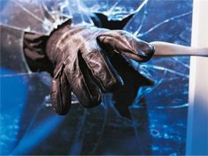 Erzurum'da hırsızlık şüphelisi 9 kişi yakalandı