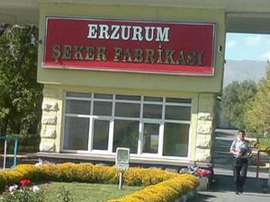 Erzurum Şeker Fabrikası ihalesinde teklif veren olmadı