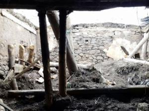 Horasan'da ahır çöktü hayvanlar telef oldu