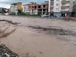 Karadeniz'de kabus devam ediyor!