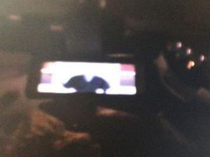 Otomobilde videosunu izlerken yakalanmışlardı!
