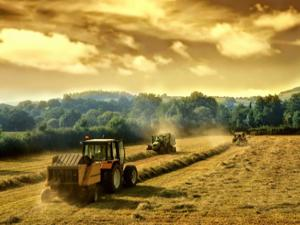 Tarım gelecek vadediyor kimse köyünü terk etmesin!