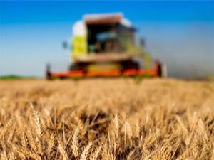 Tarım ve gıda kıymete biniyor