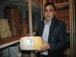 Erzurum kaşar peyniri tescillenecek