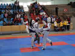 Yıldız taekwondocular Erzincan'da