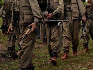 Şırnak'ta 5 terörist güvenlik güçlerine teslim oldu