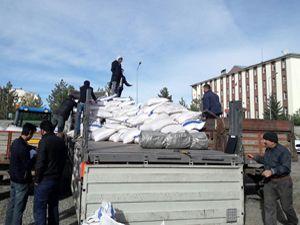 DAP İdaresi'nin desteğiyle 300 ton yem bitkisi tohumu dağıtıldı