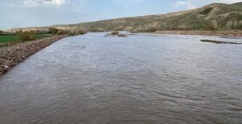 Aras Nehri coştu araziler su altında kaldı