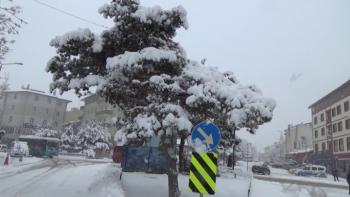 Doğu'da Mart karı sevindirdi