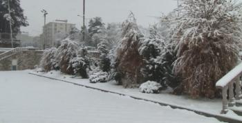 Erzurum sabaha beyaz örtüyle uyandı