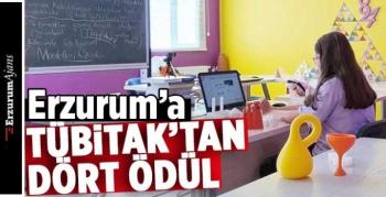 Erzurum, TÜBİTAK yarışmasında 5. oldu