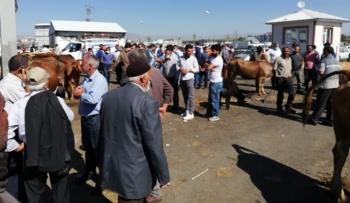 Horasan'da Kurban pazarlığında 'sopalı' dönem