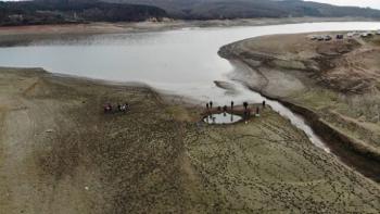 Ömerli Barajı'nda su seviyesi düştü! Balıklar telef oldu