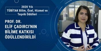 Prof. Dr. Elif Çadırcı'nın bilime katkısı ödüllendirildi
