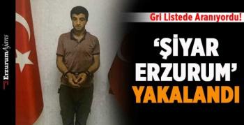 'Şiyar Erzurum' yakalandı