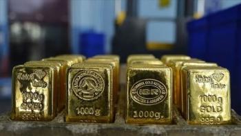 Ticaret Bakanı Pekcan'dan 'altın' mesajı