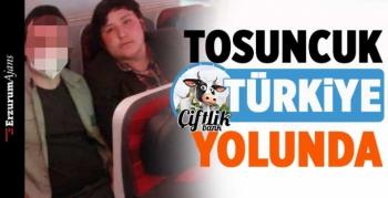 'Tosuncuk' Türkiye'ye getiriliyor
