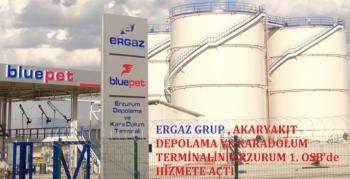 Türkiye Ekonomisine Ergaz enerjisi