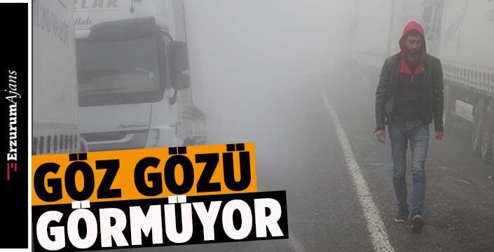 Ardahan'da yoğun sis