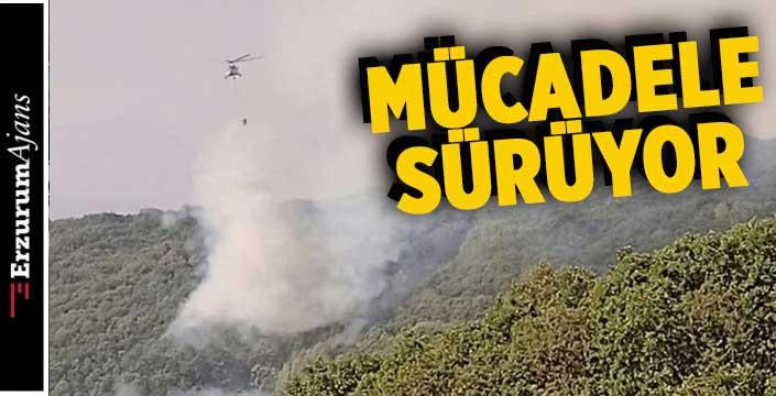 Tünceli'de orman yangını... Müdahale devam ediyor